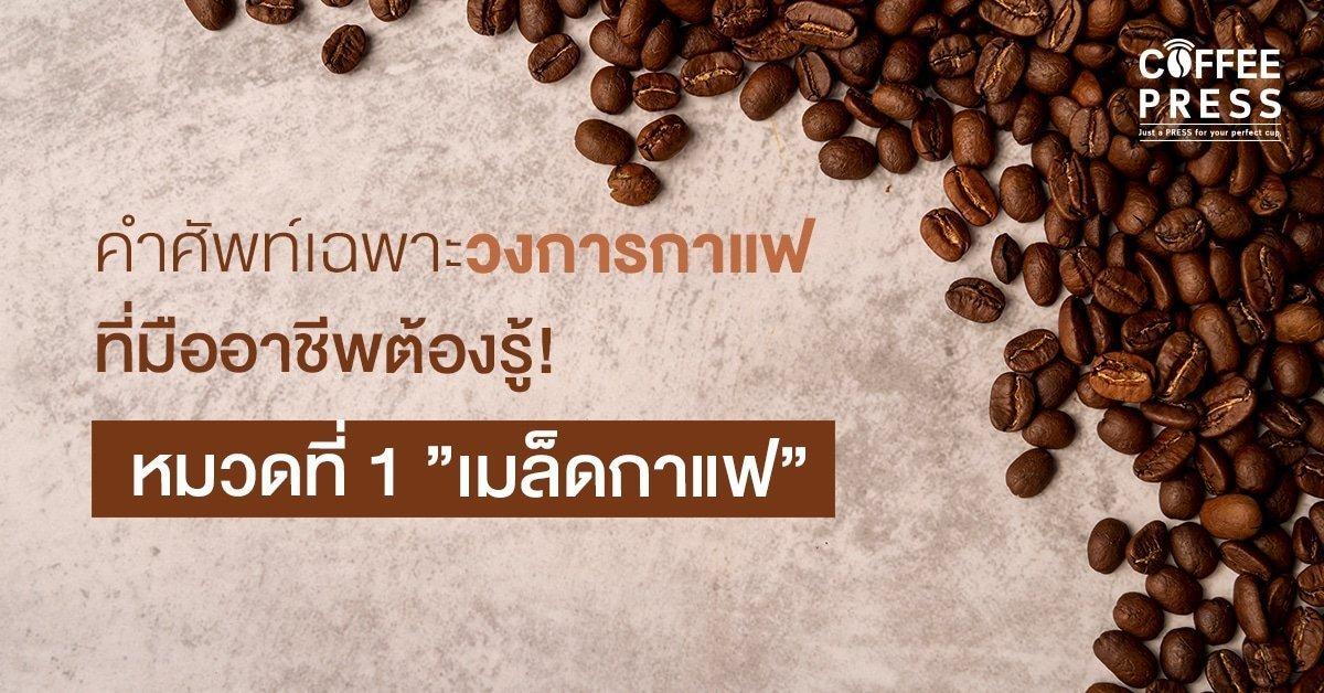 คำศัพท์วงการกาแฟเมล็ดกาแฟ